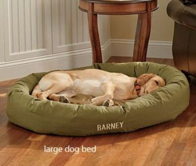 chewproof dog bed reviews