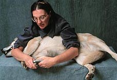 dog nail clipping - 228px x 127 px - example 2