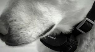 Garmin GTU 10