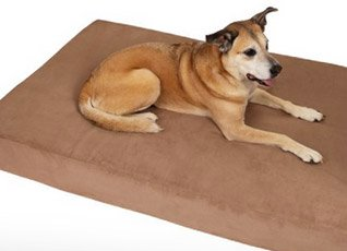 Large Dog Bed for Larger Breeds - Example 1 - 318px x 230px