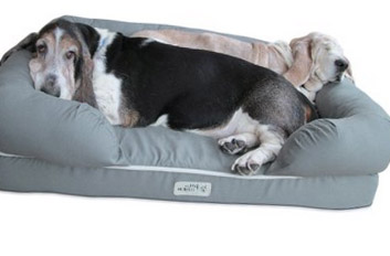 dog bed amazon - bolster model - 353px x 252px