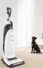miele upright to vacuum dog hair