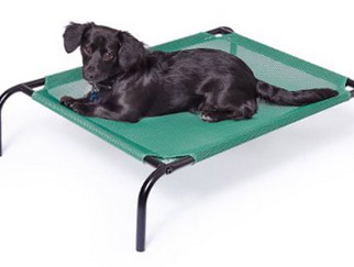 outdoor dog bed - example 1