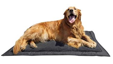 inflatable outdoor dog air bed