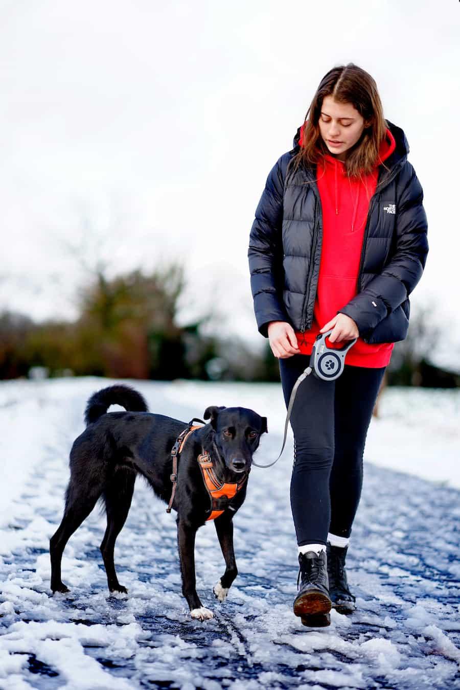 woman and dog on walk