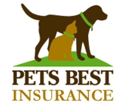 dog health insurance policies