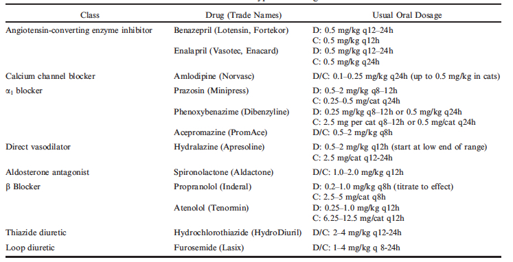 table of dog high blood pressure medications