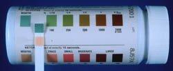 Dog Blood Glucose Test: Negative