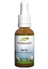 Dog Ear Infection Medicine