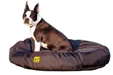 k9 Ballistics Chewproof Orthopedic Dog Bed