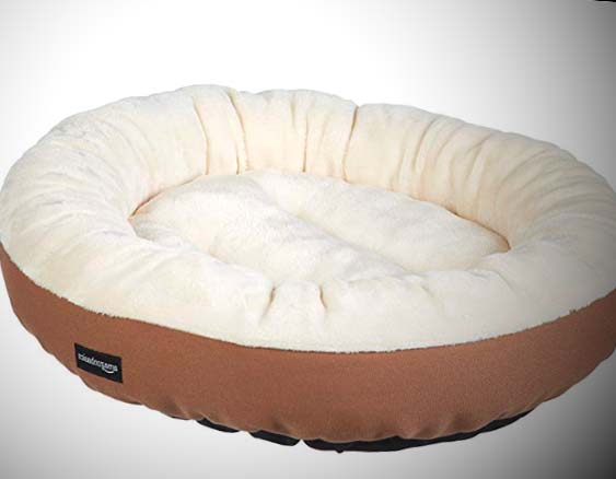 how to wash dog beds
