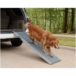 Dog Bed Ramp and Dog Car Ramp
