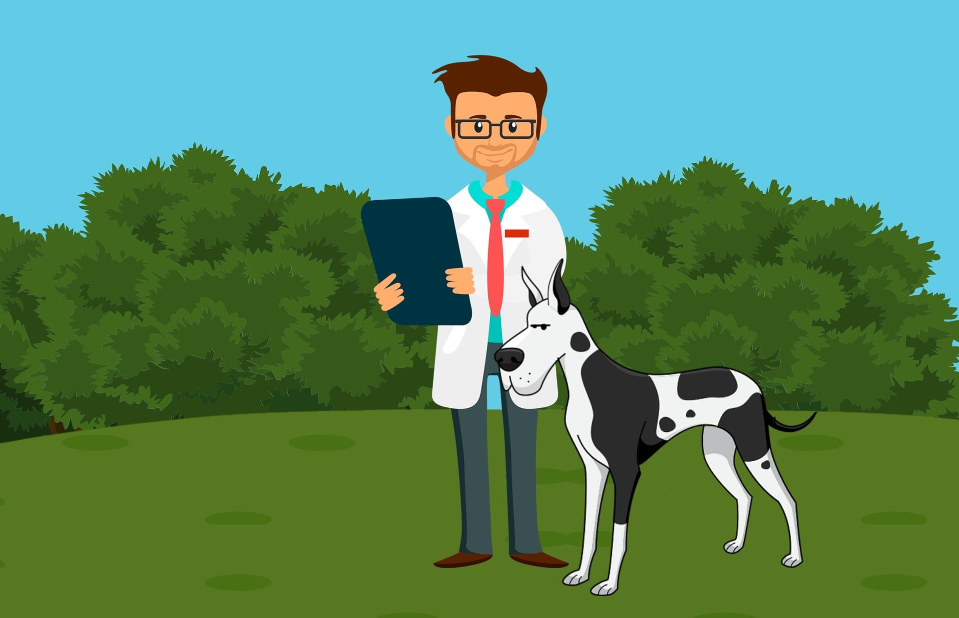 illustration of veterinarian and dog