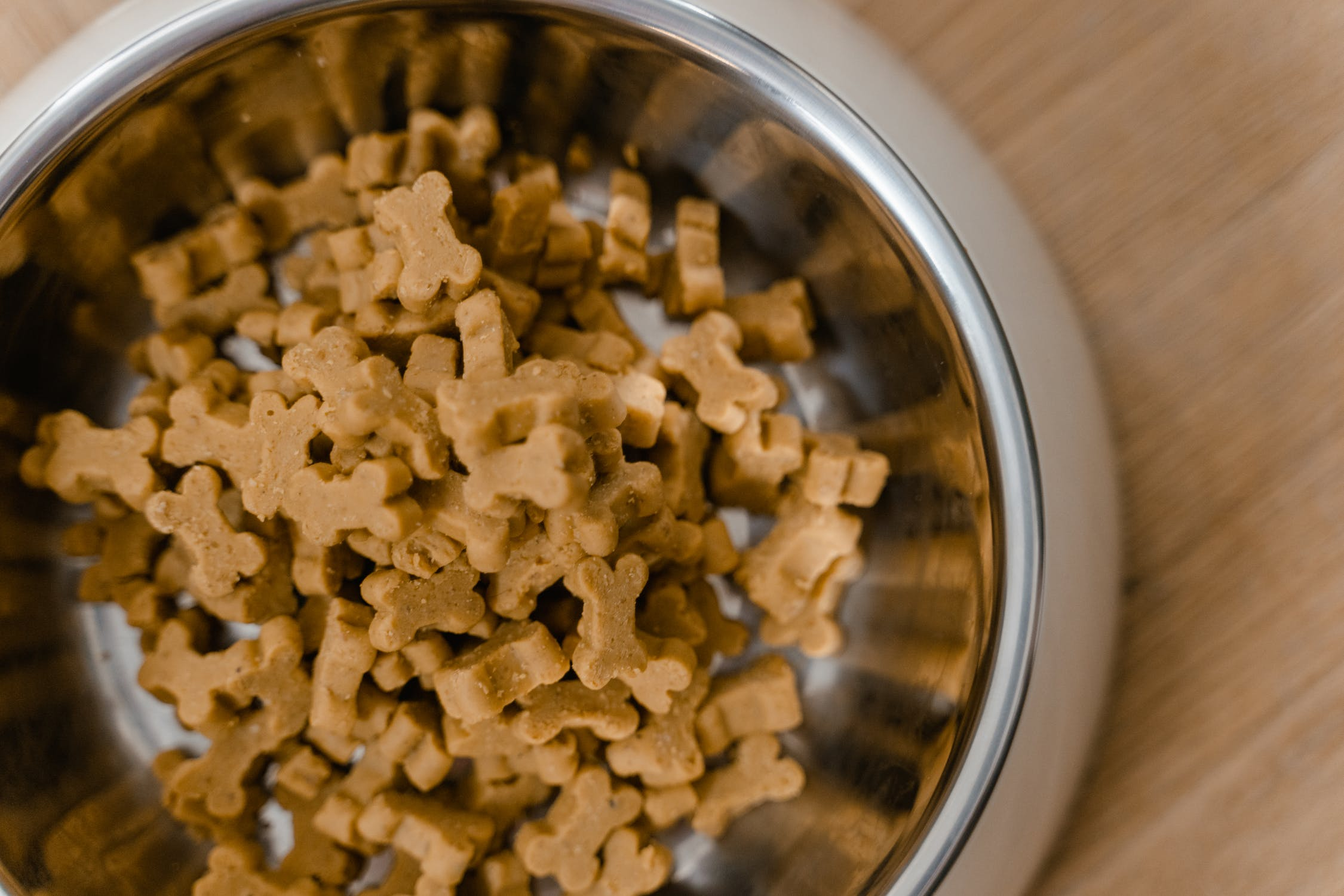bowl of wet dog food