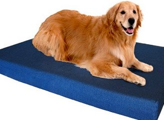 Orthopedic Dog Bed - Example 7