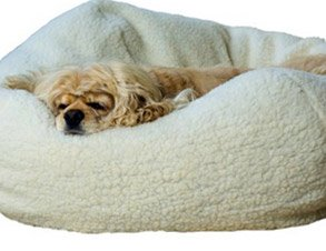Dog Bed Puff Ball Style - Example 2