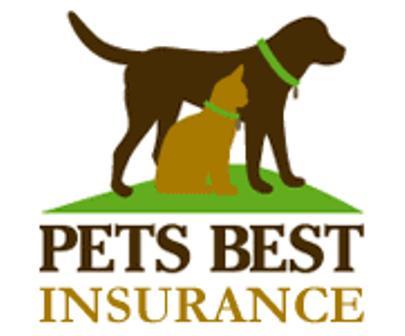 dog health insurance policies